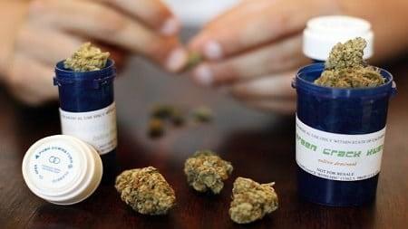 Marijuana Worker Protection
